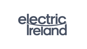 Electric Ireland logo on a checkered background on the website